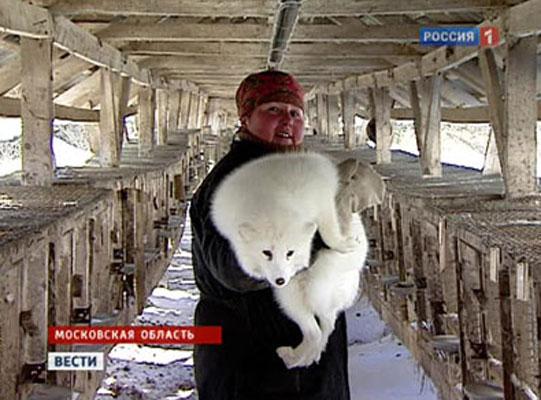 Полупальто и свингеры в фирменном магазине пушкинские меха в пушкино