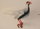таксодермия - чучело фазана