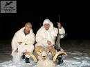 охотничьи трофеи,чучела животных
