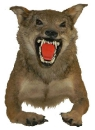 чучело волка, таксодермия